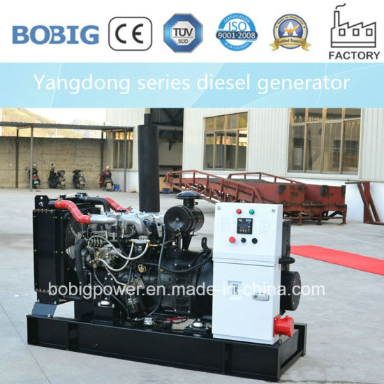12.5kVA Diesel Generator Powered by Chinese Yangdong Engine